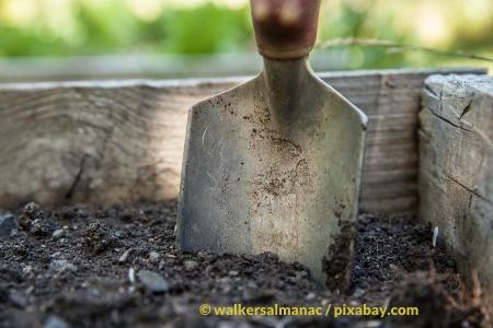 Gartenarbeit – Gartentipps für Februar