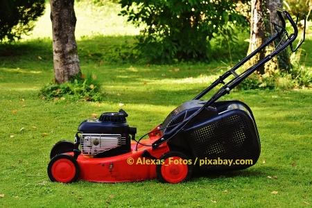 Rasen mähen – Tipps für die kühle Jahreszeit