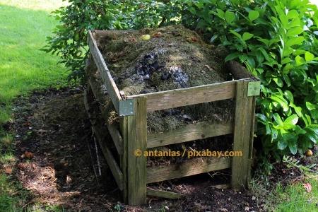 Kompost anlegen – So machen Sie alles richtig!